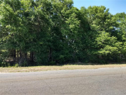 Photo of 00 Joe Bruer Road, Level Plains, AL 36322 (MLS # 452724)