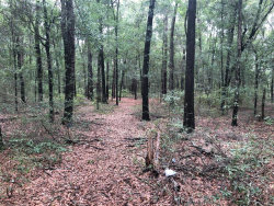 Photo of 1.01 Acres Bonita Drive, Geneva, AL 36340 (MLS # 456834)