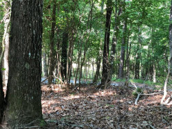 Photo of 0 Waterfall Trail, Wetumpka, AL 36092 (MLS # 456902)