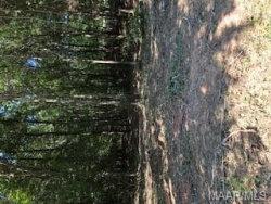 Photo of 53 Foxfire Lane, Wetumpka, AL 36092 (MLS # 460990)