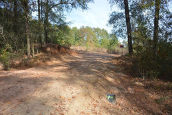 Photo of TBD Old Newton Road, Daleville, AL 36322 (MLS # 465366)