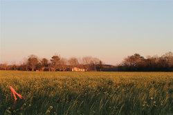 Photo of 0 Highway 167 ., Enterprise, AL 36330 (MLS # 467939)