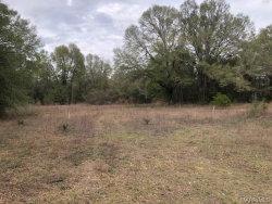 Photo of 0 John C Wells Road, Daleville, AL 36322 (MLS # 469393)