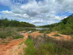 Photo of 00 BULL BRANCH Road, Coffee Springs, AL 36318 (MLS # 470386)