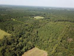 Photo of 25 acres Coe Road, Hartford, AL 36375 (MLS # 478577)
