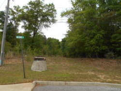 Photo of Lot 13 WILSHIRE Street, Geneva, AL 36340 (MLS # W20160921)