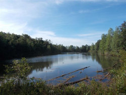 Photo of 9.5 acres PRIVATE ROAD 1363, Ariton, AL 36311 (MLS # W20171613)