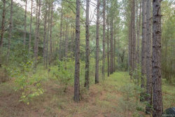Photo of 84 ACRES COUNTY ROAD 61, Hartford, AL 36344-0000 (MLS # W20180428)