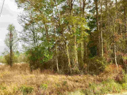 Photo of 0 ETHRIDGE Road, Geneva, AL 36340 (MLS # W20180778)