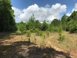 Photo of 29 ACRES COUNTY ROAD 41, Hartford, AL 36344 (MLS # W20181014)