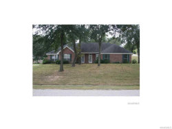 Photo of 51 BRANDY Court, Deatsville, AL 36022 (MLS # 428844)