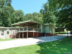 Photo of 189 Hagan Road, Eclectic, AL 36024 (MLS # 426736)