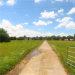 Photo of 2191 Alabama River Parkway, Millbrook, AL 36054 (MLS # 436821)
