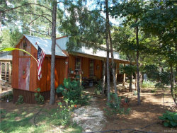 Photo of 338 Good Hope Road, Eclectic, AL 36024 (MLS # 436829)