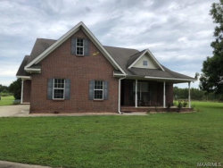 Photo of 7224 Eulon Mills Road, Florala, AL 36453 (MLS # 439361)