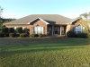 Photo of 101 County Road 163 Drive, New Brockton, AL 36351 (MLS # 443728)