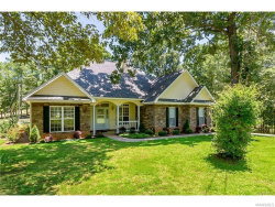 Photo of 383 Lakeview Drive, Eclectic, AL 36024 (MLS # 445351)