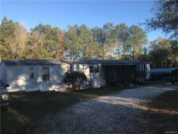 Photo of 1395 COUNTY ROAD 109 Road, Daleville, AL 36322 (MLS # 445559)