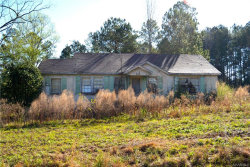 Photo of 1488 County Road 147 ., New Brockton, AL 36351 (MLS # 449951)