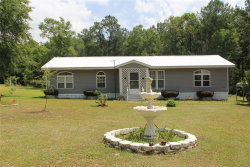 Photo of 1357 COUNTY ROAD 109 ., Daleville, AL 36322 (MLS # 452852)