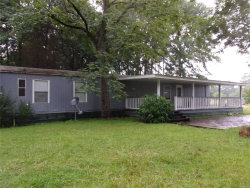 Photo of 456 S RIPLEY Street, Samson, AL 36477 (MLS # 457152)