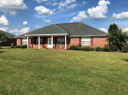 Photo of 198 Hannah Road, Daleville, AL 36322 (MLS # 457455)
