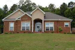 Photo of 233 COUNTY ROAD 165 Road, New Brockton, AL 36351 (MLS # 459464)