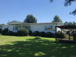 Photo of 1620 Pink Lilly Road, Prattville, AL 36067 (MLS # 460860)