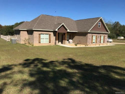 Photo of 475 County Road 659 ., Coffee Springs, AL 36318 (MLS # 466769)