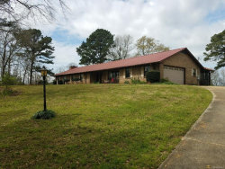 Photo of 764 County Road 204 Road, Ariton, AL 36311 (MLS # 467153)