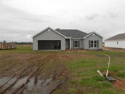 Photo of 149 Abigail Court, Daleville, AL 36322 (MLS # 468145)