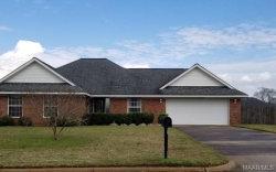Photo of 158 Hannah Road, Daleville, AL 36322 (MLS # 469074)