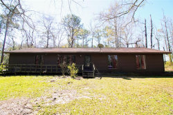 Photo of 180 Green Briar Drive, Cottonwood, AL 36320 (MLS # 469519)