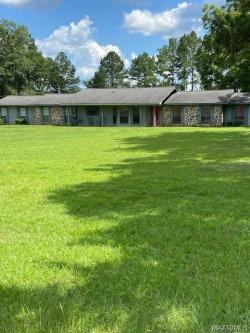Photo of 203 Powell Circle, Ariton, AL 36311 (MLS # 476450)