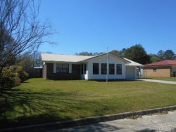 Photo of 304 WISE Street, Samson, AL 36477 (MLS # W20180701)