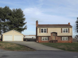 Photo of 103 Dinlake Court, Forest, VA 24551 (MLS # 315665)