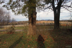 Tiny photo for 1485 Three Otters Road, Bedford, VA 24523 (MLS # 316112)
