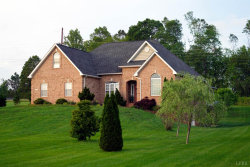 Photo of 1441 Colby Drive, Forest, VA 24551 (MLS # 323246)