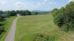 Photo of Deer Hollow Road, Lot 8, Forest, VA 24551 (MLS # 320346)