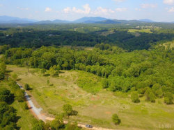 Photo of 3 Otter River Estates, Goode, VA 24556 (MLS # 321521)