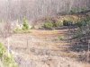 Photo of Riverville Road, Lot A, Amherst, VA 24553 (MLS # 322690)