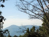 Photo of Turkey Mountain Road, Amherst, VA 24521 (MLS # 322865)
