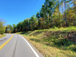 Photo of Leesville Road, Lot #2, Evington, VA 24550 (MLS # 325570)