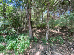 Photo of Eastwind Street, Lot 44, Forest, VA 24551 (MLS # 325815)