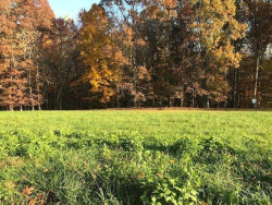 Photo of 13 Smartview Lane, Lot 13, Forest, VA 24551 (MLS # 326182)