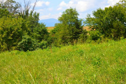 Photo of New Kent Drive, Goode, VA 24556 (MLS # 326377)