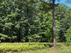 Photo of Old Courthouse Road, Appomattox, VA 24522 (MLS # 326795)