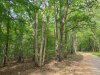 Photo of Walnut Springs Road, Lot 3, Madison Heights, VA 24572 (MLS # 327015)