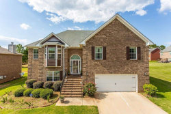 Photo of 345 Panhandle Pl, Hampton, GA 30228 (MLS # 8816276)