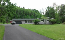 Photo of 1004 Porterville Road South, Aurora, NY 14052 (MLS # B1054569)